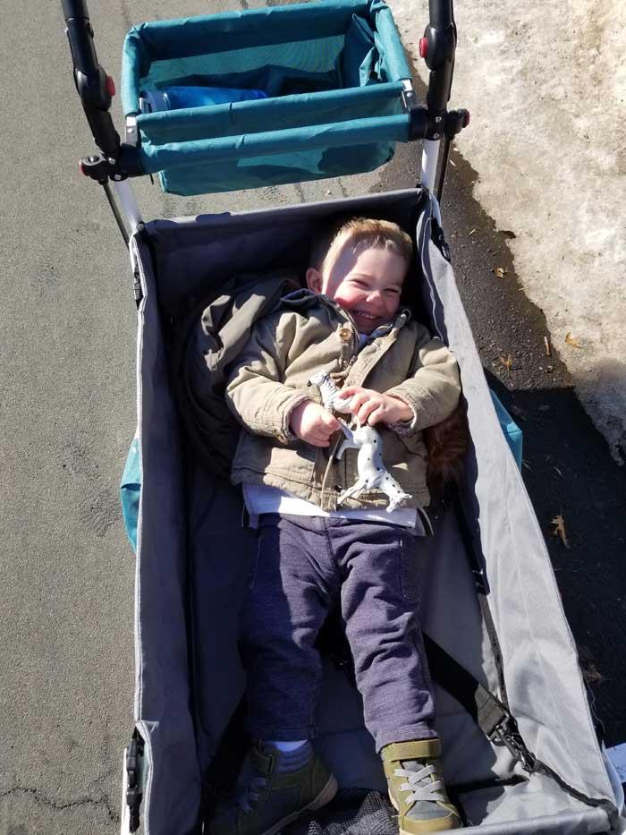 toddler laying push wagon stroller