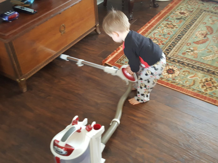 Shark Rotator Lift Away Hardwood Floors - best vacuum for pet hair and hardwood floors