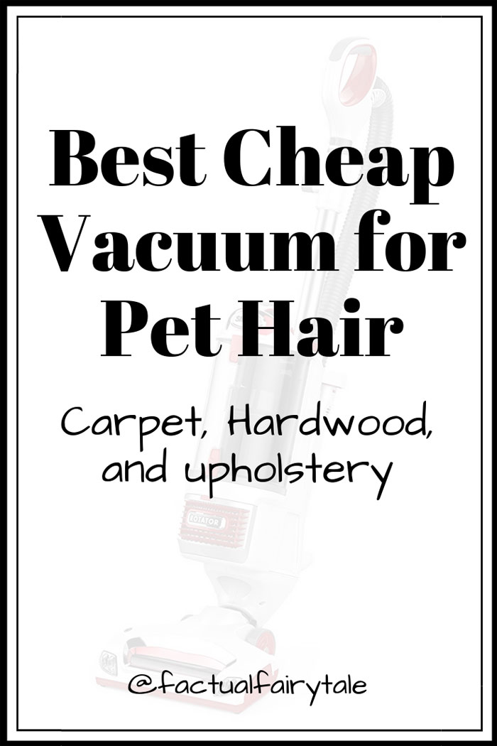 Best Cheap Vacuum for Pet Hair