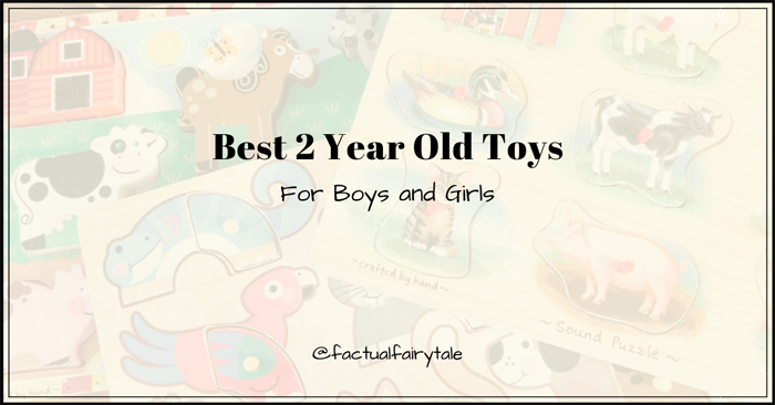 best toys for 2 year old boys and girls