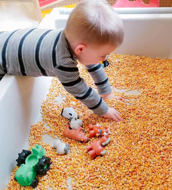 sensory bin | toys for 2 year old